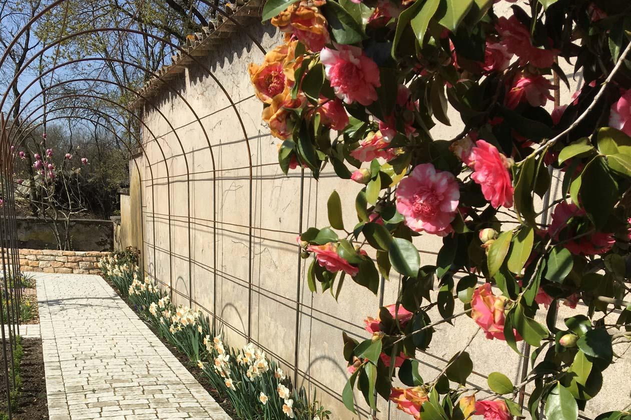 Allée pavée fleurie